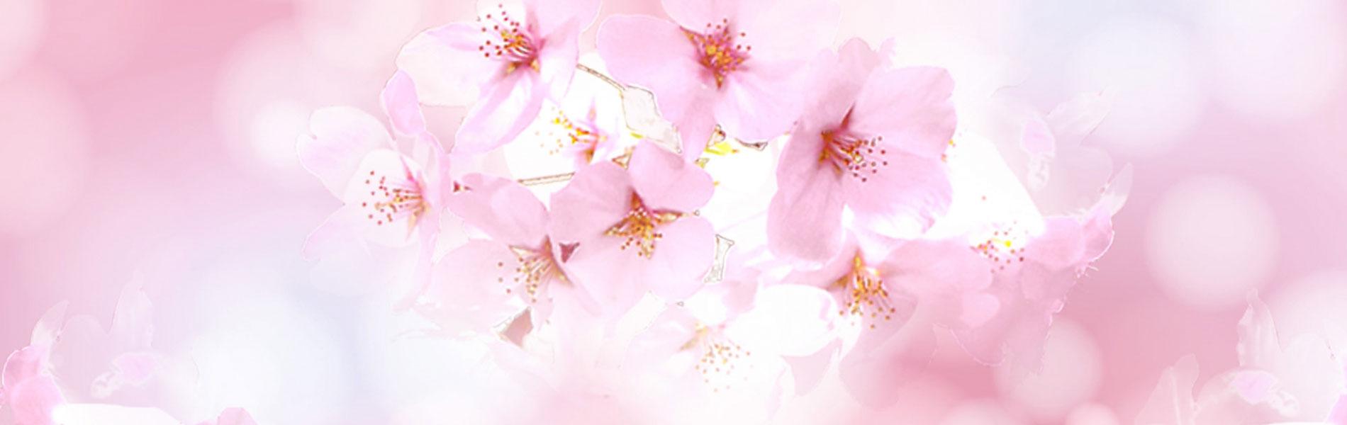 桜アビスティ ビギン大阪